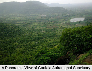 Gautala Autramghat Sanctuary, Maharashtra