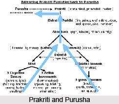 Tatah manojavitvam vikaranabhavah pradhanajayah ca, Patanjali Yoga Sutra
