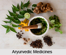 Traditional Indian Medicine in Early Modern Period