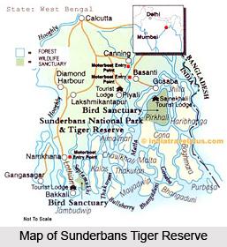 Sundarbans Tiger Reserve