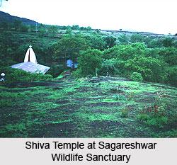 Sagareshwar Wildlife Sanctuary, Sangli District, Maharashtra