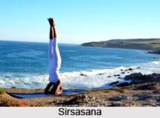 Impact of Yoga Asanas on Respiratory System