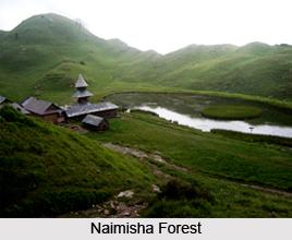 Naimisha Forest