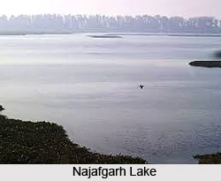 Najafgarh Lake, South West Delhi