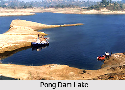 Tourism in Pong Dam
