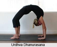 Urdhva Dhanurasana