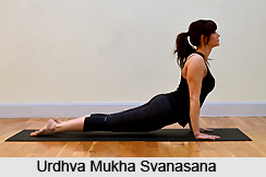 Urdhva Mukha Svanasana