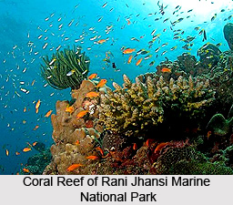 Rani Jhansi Marine National Park, Andaman and Nicobar Islands
