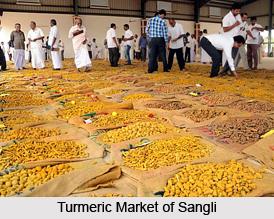 Sangli, Maharashtra