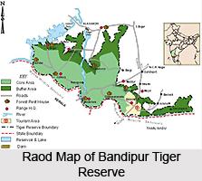Bandipur Tiger Reserve