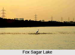 Fox Sagar Lake, Hyderabad