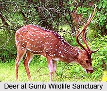 Gumti Wildlife Sanctuary, South Tripura District, Tripura