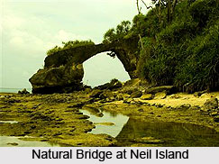 Neil Island, Andaman and Nicobar Islands