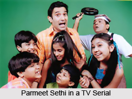 Parmeet Sethi, Indian Television Actor