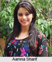Aamna Sharif, Indian TV Actress