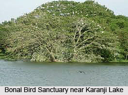 Bonal Bird Sanctuary, Yadgir District, Karnataka