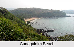Canaguinim Beach, Goa