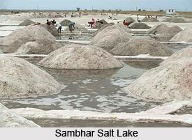 Sambhar Salt Lake, Jaipur