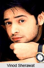Vinod Sherawat, Indian TV Actor