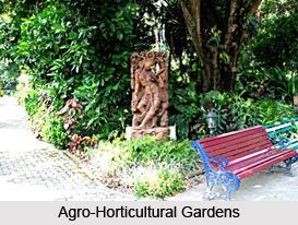 Agro-Horticultural Gardens ,  Kolkata
