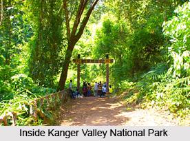 Kanger Valley National Park, Chhattisgarh