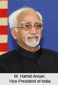 Indian Vice-President, Indian Executive