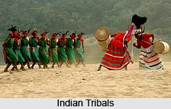 Ministry of Tribal Affairs, Indian Ministries