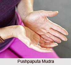 Pushpaputa Mudra