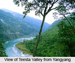 Yangyang, Sikkim