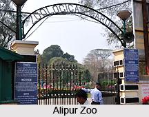 Alipur , Kolkata