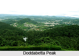 Doddabetta Peak, Nilgiri, Tamil Nadu