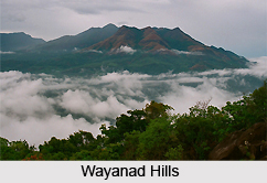 Wayanad, Indian Hill Station