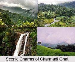 Charmadi Ghat, Dakshina Kannada District, Karnataka