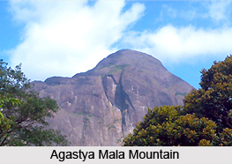Agastya Mala Mountain, South India