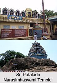 Festivals of Sri Pataladri Narasimhasvami Temple, Singaperumalkoil, Tamil Nadu