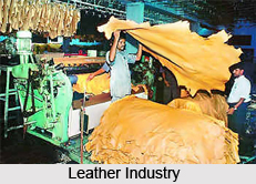 Leather Industry in India