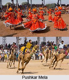 Pushkar Mela, Indian Festival, Rajasthan