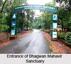 Bhagwan Mahavir Sanctuary, Molem, Goa