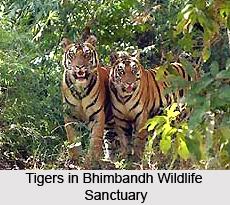 Bhimbandh Wildlife Sanctuary, Bihar