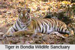Bondla Wildlife Sanctuary, Goa