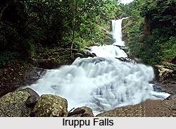 Iruppu Falls, Karnataka