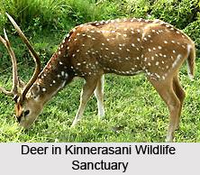 Kinnerasani Wildlife Sanctuary, Andhra Pradesh