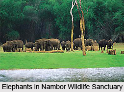Nambor Wildlife Sanctuary, Assam