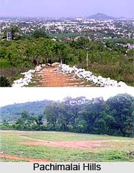 Pachaimalai Hills, Tamil Nadu