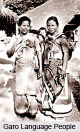 Tibeto-Burman Language Families