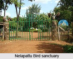 Leisure Tourism In Nellore District, Andhra Pradesh