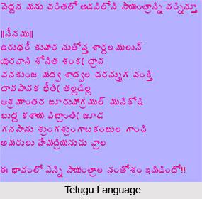 Andhra language