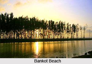 Bankot Beach, Maharashtra