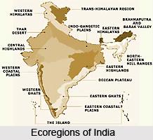 Ecoregions in India