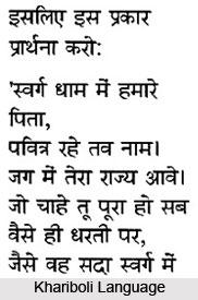 Khariboli, Hindi Language